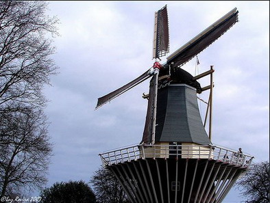 Голландия - город цветов